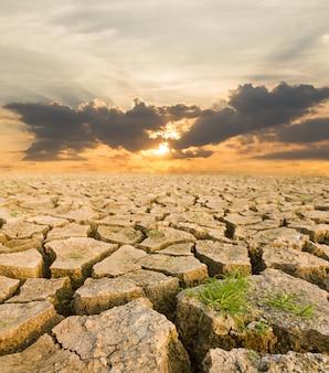 夕日の下で干ばつの土地