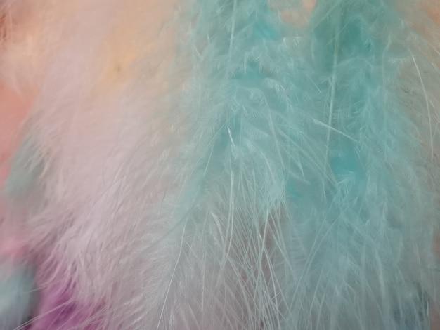 クローズアップパステルカラフルな羽毛テクスチャ。抽象的な背景