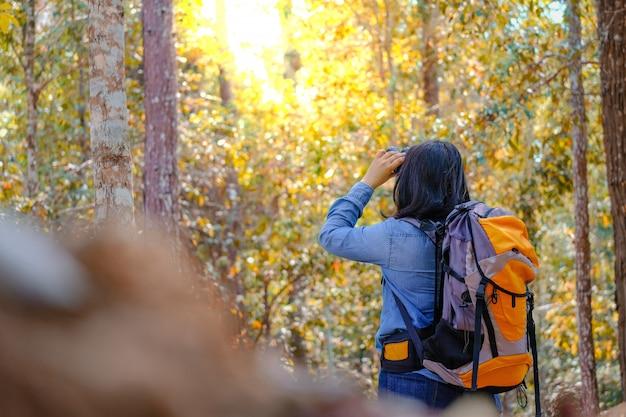 Счастливый азиатский рюкзак девушки в предпосылке парка и леса, ослабьте время на путешествии концепции праздника