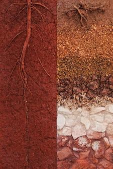 Сравнение слоев почвы хорошего качества с низким качеством почвы в природе