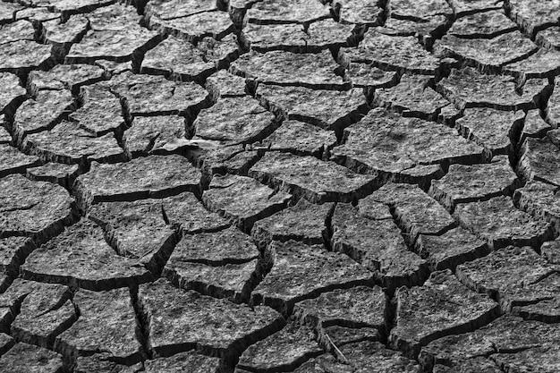 Узоры на сухой земле