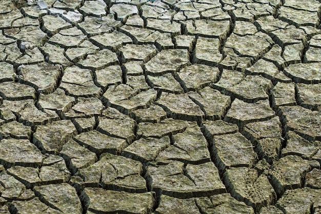 土壌または地層