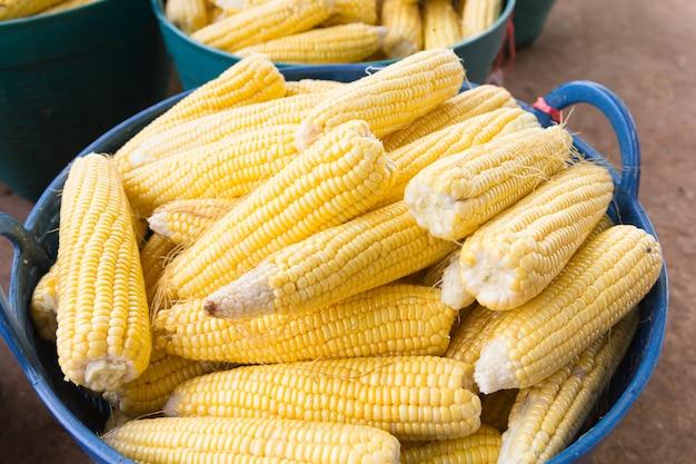 農民市場での新鮮なスイートコーンの穂軸