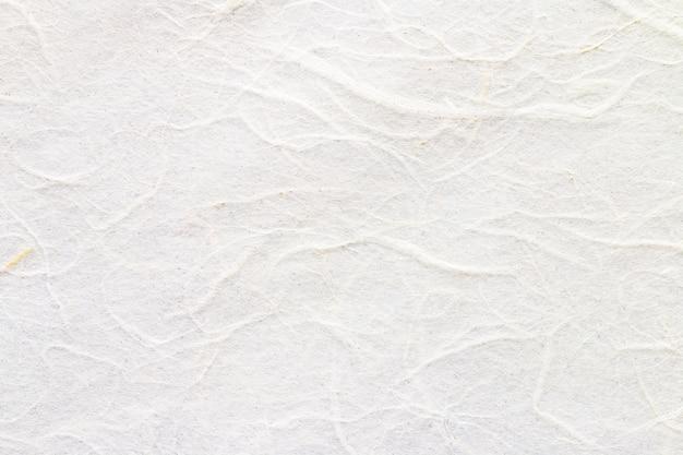 Текстура белой шелковицы