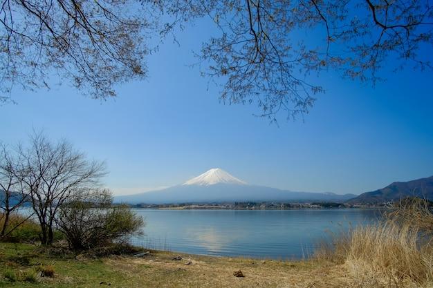 雪をかぶった富士山、青い空と美しい桜