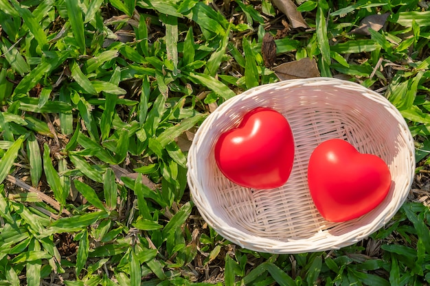 屋外の庭で緑の自然の背景にカップル赤いハート形