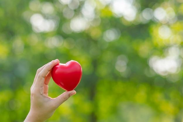 緑の自然な背景に赤いハートを持つ女性の手