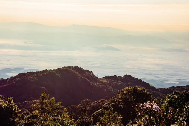 風景、山と丘