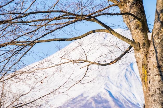 Зимняя погода горы фудзи