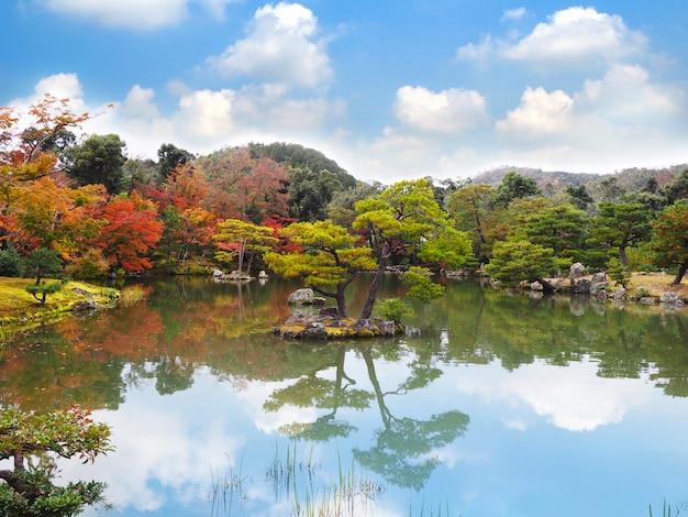 カラフルな秋の公園と赤いカエデと松の木のある池。