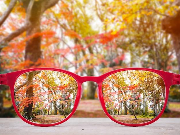 秋の公園の背景に赤いメガネレンズ。