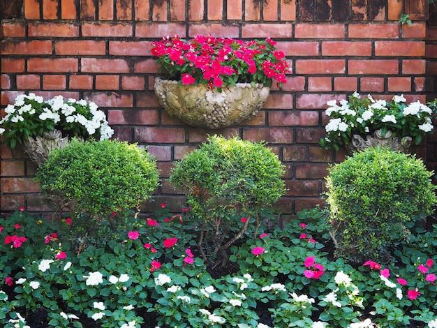 古いレンガの壁に花と木のビンテージ垂直園芸