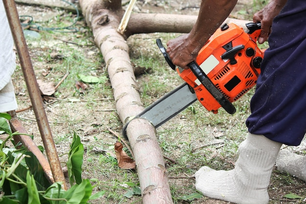 森の中で働く木こり