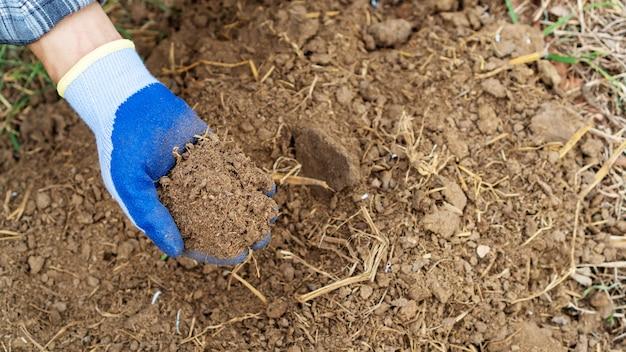 植物の有機肥料を持っている人