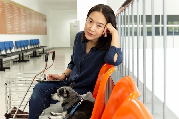 獣医病院でチワワ犬を持つ美しい女性。