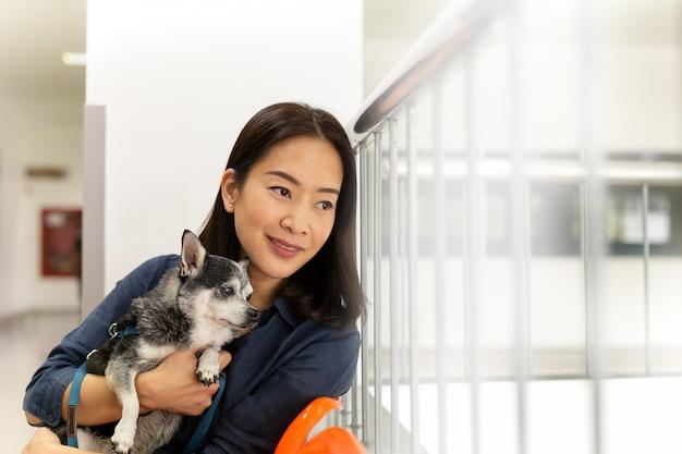 獣医病院でチワワ犬を保持している美しい女性。