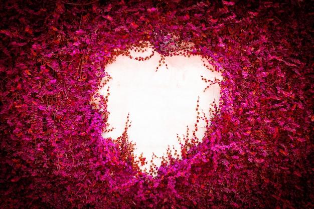 抽象的なピンクの葉の壁の背景。
