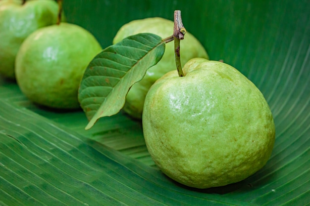 Свежие фрукты гуавы.