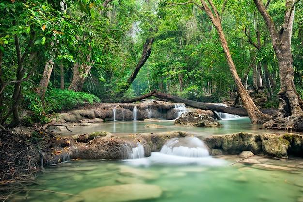 山の深い森林のジャングルの国立公園のストリーミング滝の背景。