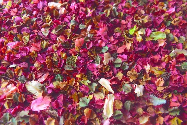 乾燥した花のポプリの背景のカラフルな花びら。