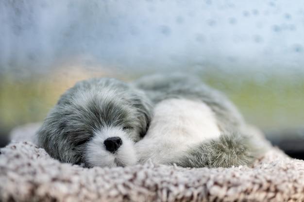 車の前で寝ている犬人形