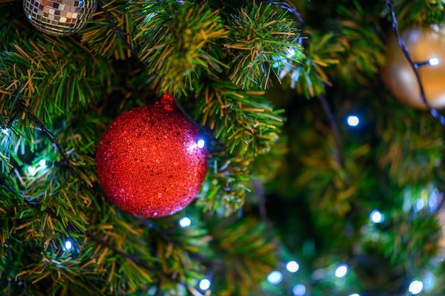 クリスマスの花と装飾ライト