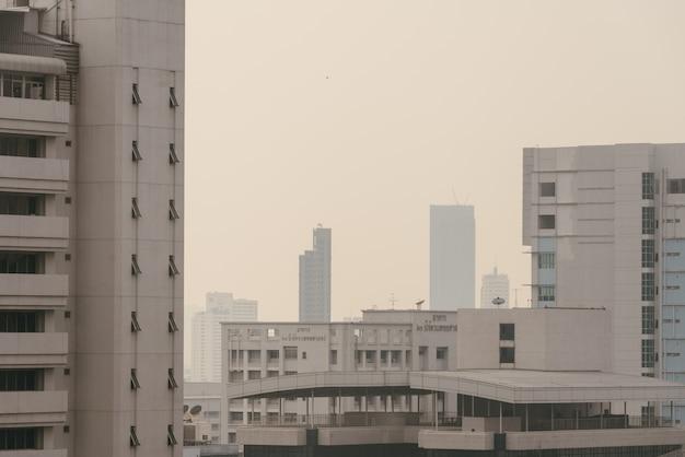 大気汚染の影響で、空気中のほこりから曇りや霧のある視界の悪い景観ができました。