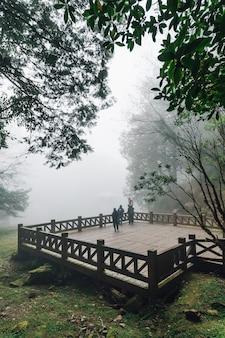 杉の木と霧の木製のプラットフォームに立っている観光客