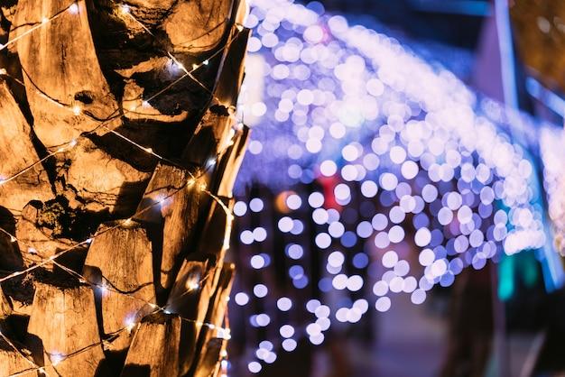 背景にボケがあるヤシの木。クリスマスのお祝いと新年のお祝い。