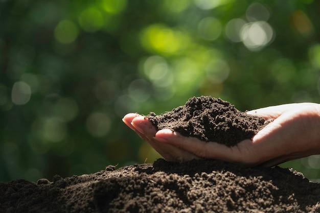 植栽のための手で土を保持している男性の手。