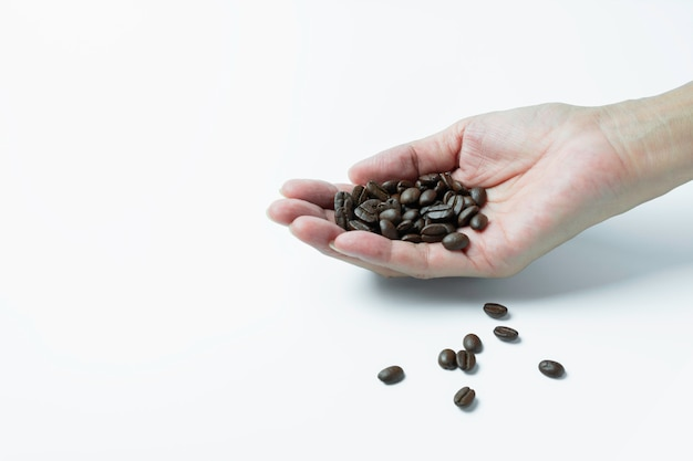 白い背景とコピースペースで分離されたコーヒー豆を持っている手