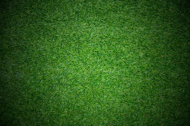 マッチプレイフィールドスポーツコンセプト草背景スペーステキスト