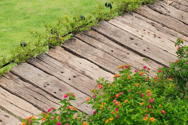 庭の装飾公共公園の緑の芝生、自然の背景の木の足のパス。