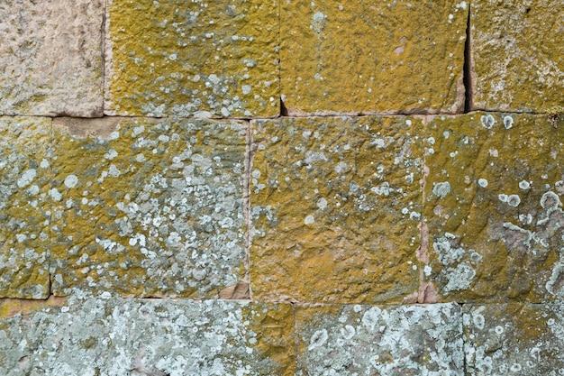 灰色の石は緑色の苔のダッシュで覆われています