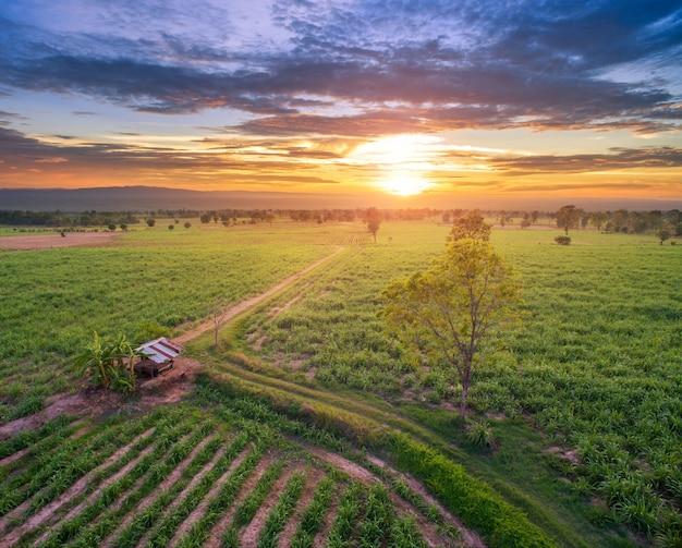 日没時の劇的な空撮の田園風景を抽象化します。