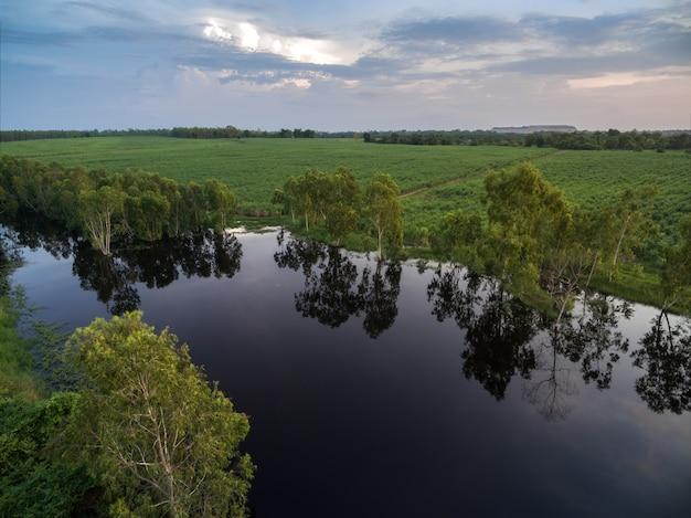 空撮サトウキビの自然の背景を持つ魅力的な池。