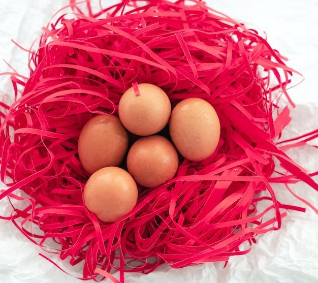 Группа яйцо положить на гнездо. из красной бумаги, много капель воды на яичной скорлупе
