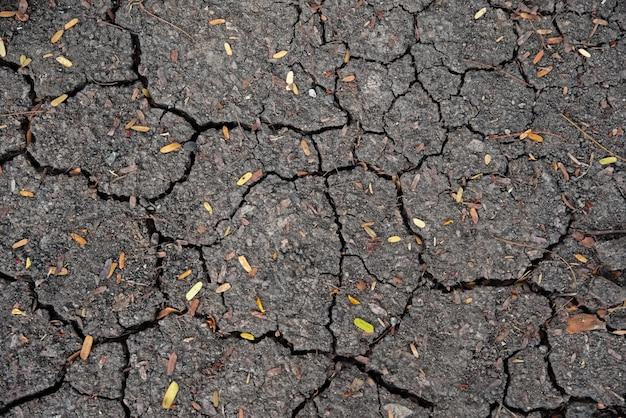 地球の壊れた表面、地球温暖化からのサイン