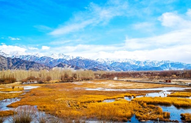 茶色の木と森、雪の山の景色レーとインド、リトルチベットの土地でラダックで川に凍結