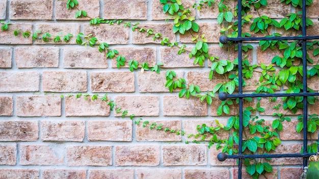 グランジのレンガの壁のヴィンテージと家の装飾