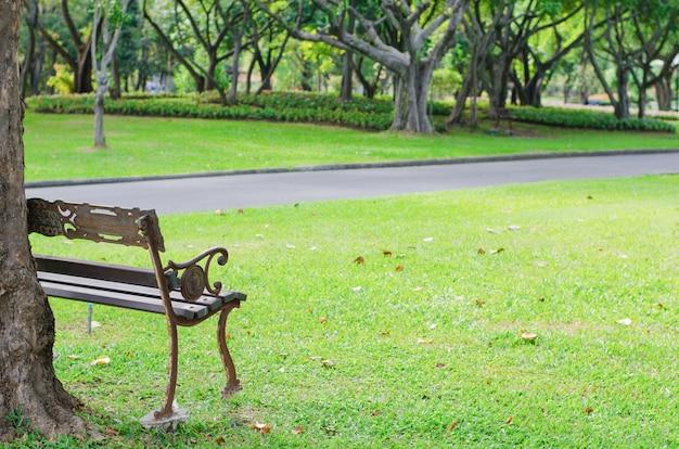 Скамейка в летнем парке с тропинкой