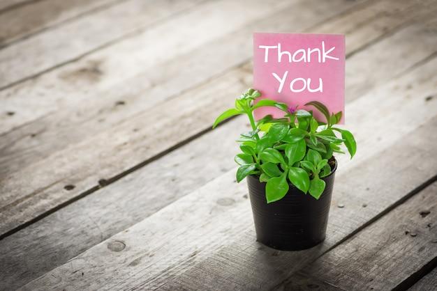 Надпись спасибо на карточке и декоративных растениях