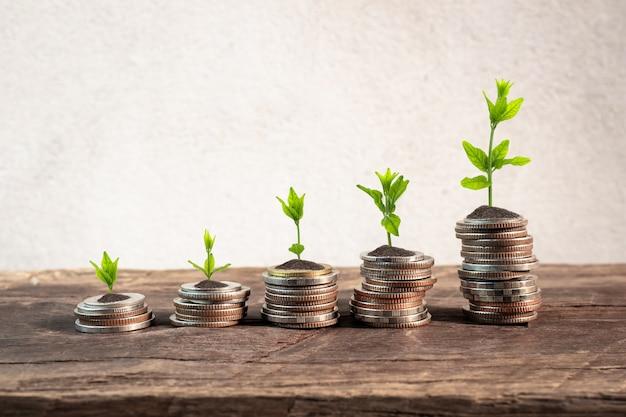 背景セメント壁を持つテーブルの上の若い植物とのコイン。