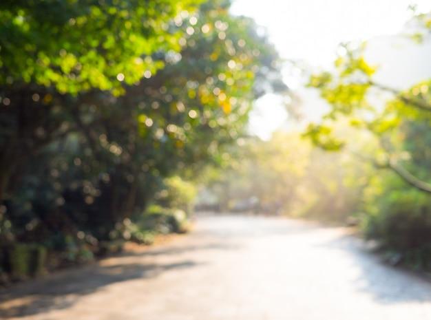 木の庭と背景のボケ味を持つ地元の道路の抽象的なぼかし画像
