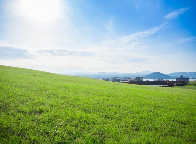 海、山、美しい空を見下ろす丘の上の緑の芝生フィールド