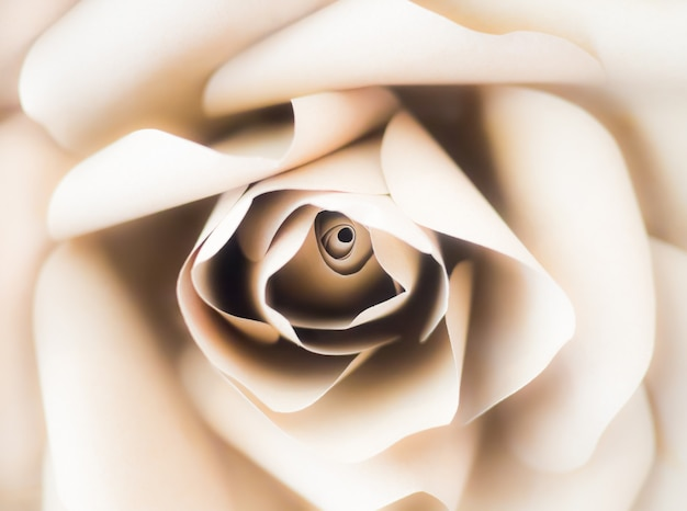 Бумажные белые розовые цветы ручной работы