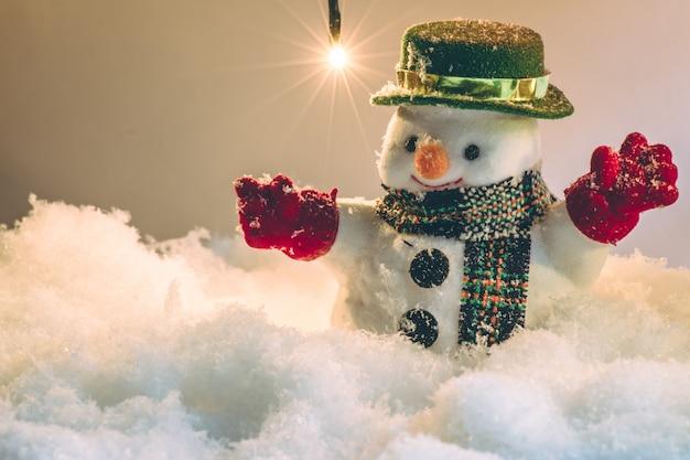 電球で黙って夜に雪の中の雪だるま