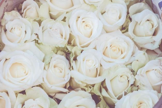 白いバラのブーケの背景