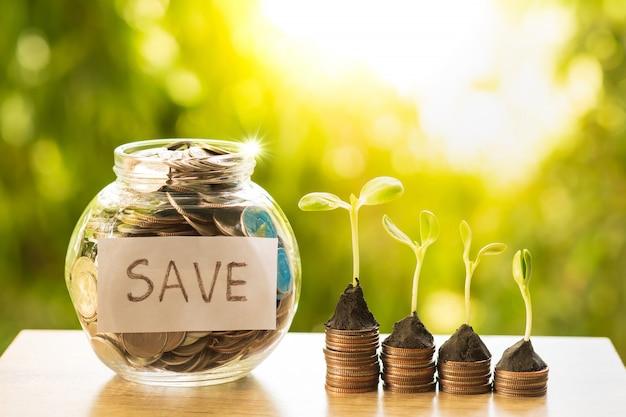 金融と銀行の概念のためのコインスタックの行に成長している植物とお金の完全な瓶をクリアします。