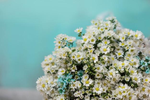シアンの背景を持つ紙に包まれた白いデイジーの花束